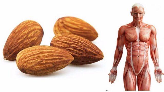 4 choses qui se passent dans votre corps lorsque vous mangez des amandes tous les jours